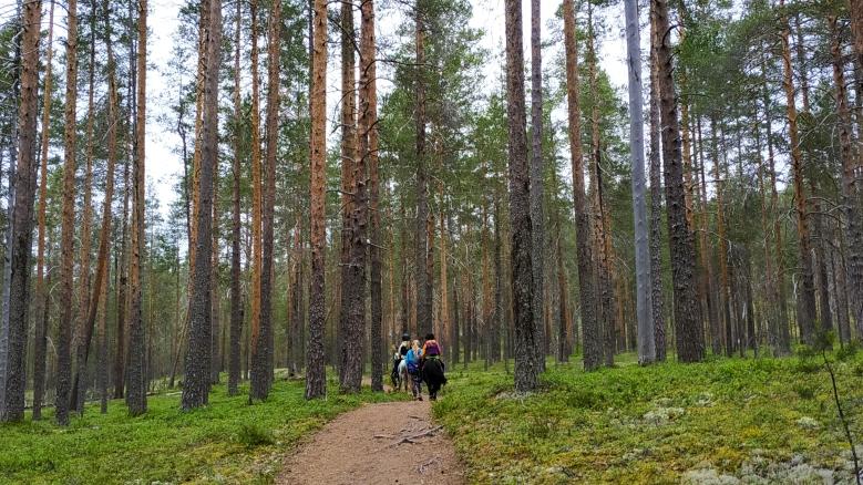 ruta a caballo parque nacional