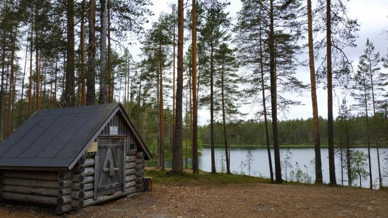 cabaña en bosque de finlandia