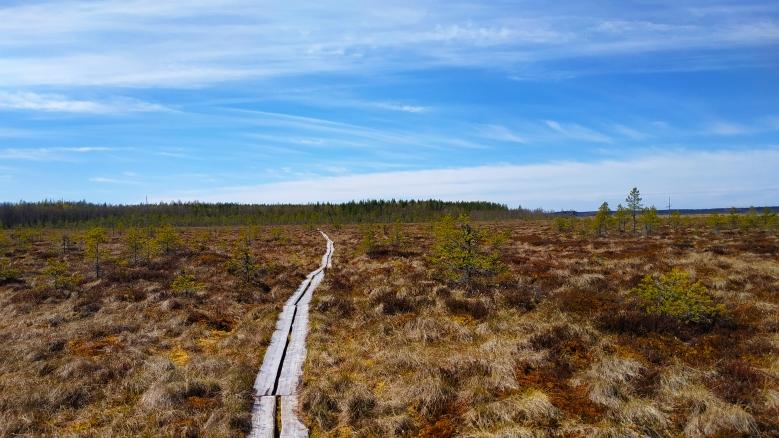 Pantano en Finlandia
